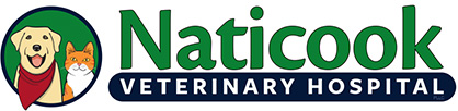 Veterinarians Merrimack, Nashua, Amherst NH | Naticook Veterinary Hospital